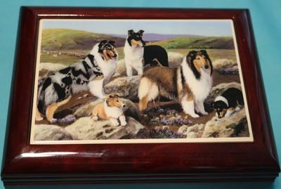 Jewelry box with 3 collies on the lid.