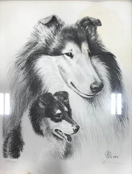 Cindy Alvarado-Yeary pencil drawing of 2 collies.