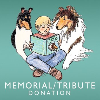 Memorial/Tribute Donation image for shop.